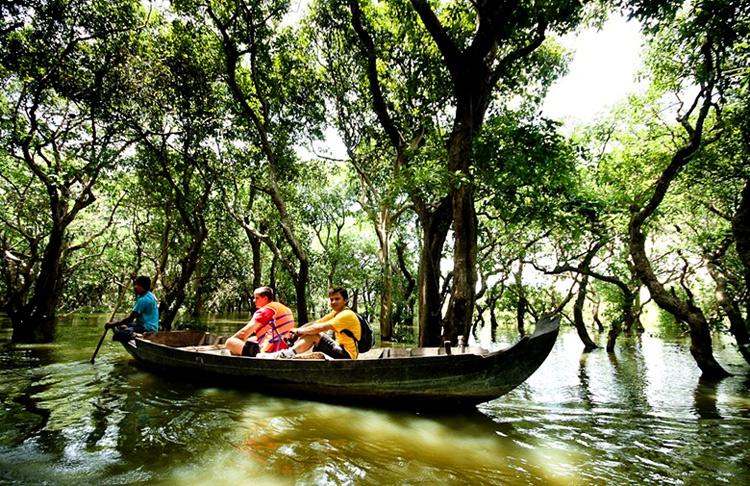 Khách du lịch, đặc biệt là du khách phương Tây thích đi thuyền qua rừng đước, rừng chàm...
